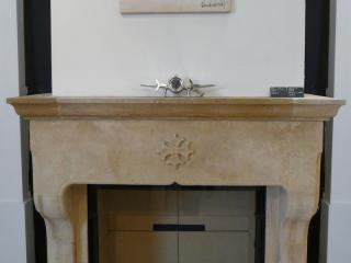 cheminée modèle CIGALE avec foyer fermé